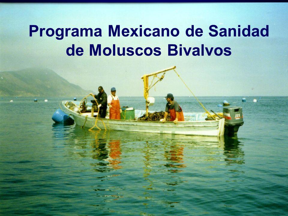 El PMSMB atiende las visitas de auditoria que realizan las autoridades sanitarias de otros países (EE.UU.