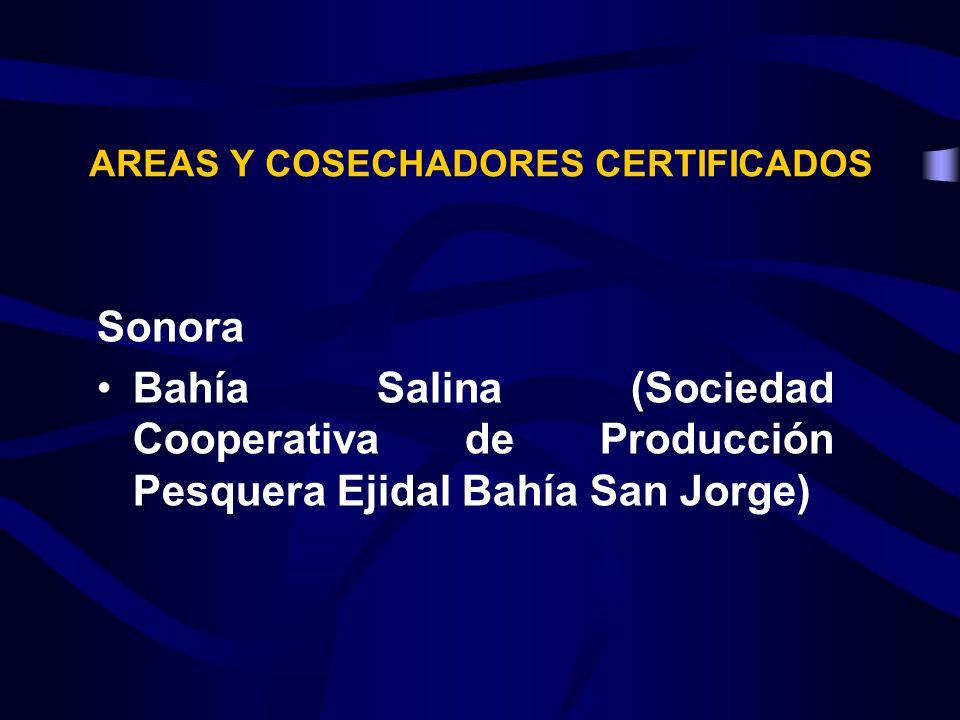 Sonora Bahía Salina (Sociedad Cooperativa de Producción Pesquera Ejidal Bahía San Jorge) AREAS Y COSECHADORES CERTIFICADOS