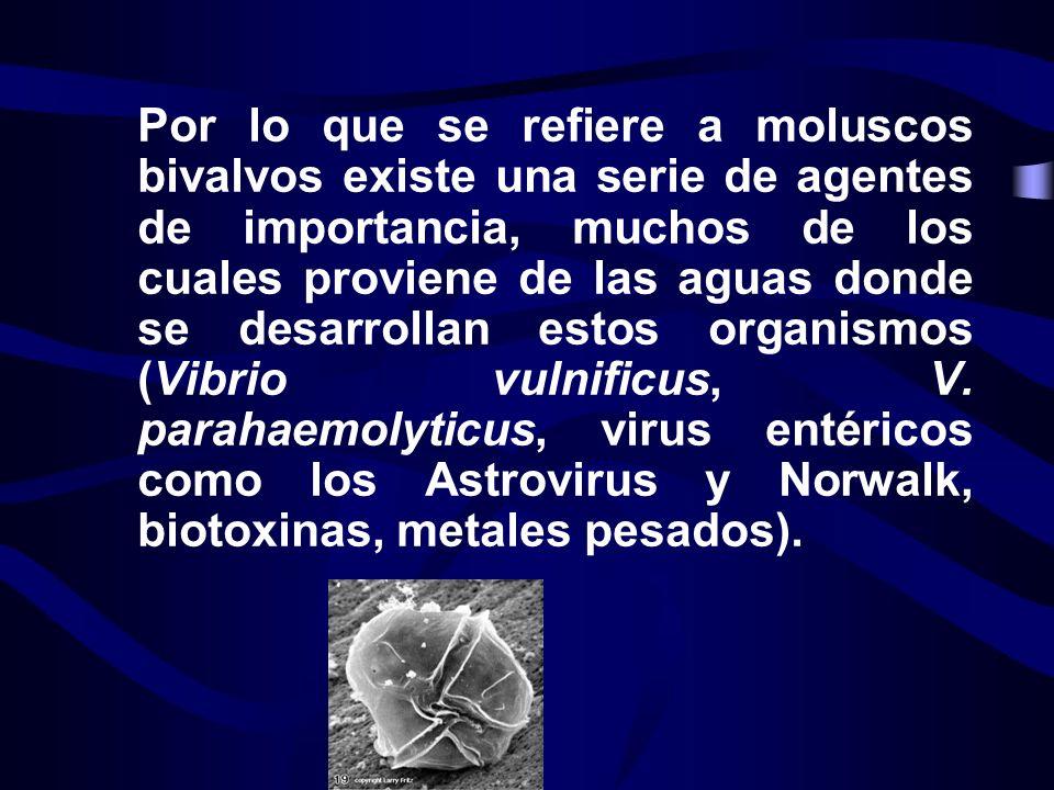 Por lo que se refiere a moluscos bivalvos existe una serie de agentes de importancia, muchos de los cuales proviene de las aguas donde se desarrollan