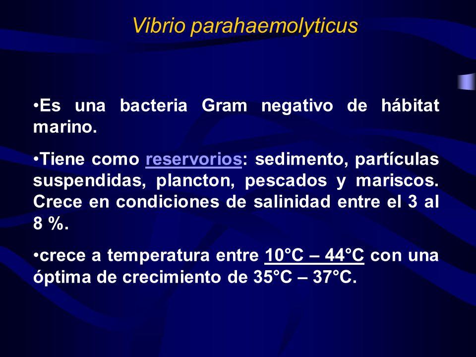Es una bacteria Gram negativo de hábitat marino. Tiene como reservorios: sedimento, partículas suspendidas, plancton, pescados y mariscos. Crece en co