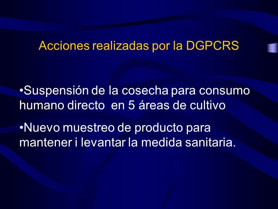 Acciones realizadas por la DGPCRS Suspensión de la cosecha para consumo humano directo en 5 áreas de cultivo Nuevo muestreo de producto para mantener