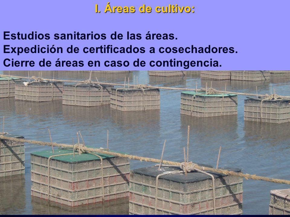I. Áreas de cultivo: Estudios sanitarios de las áreas. Expedición de certificados a cosechadores. Cierre de áreas en caso de contingencia.