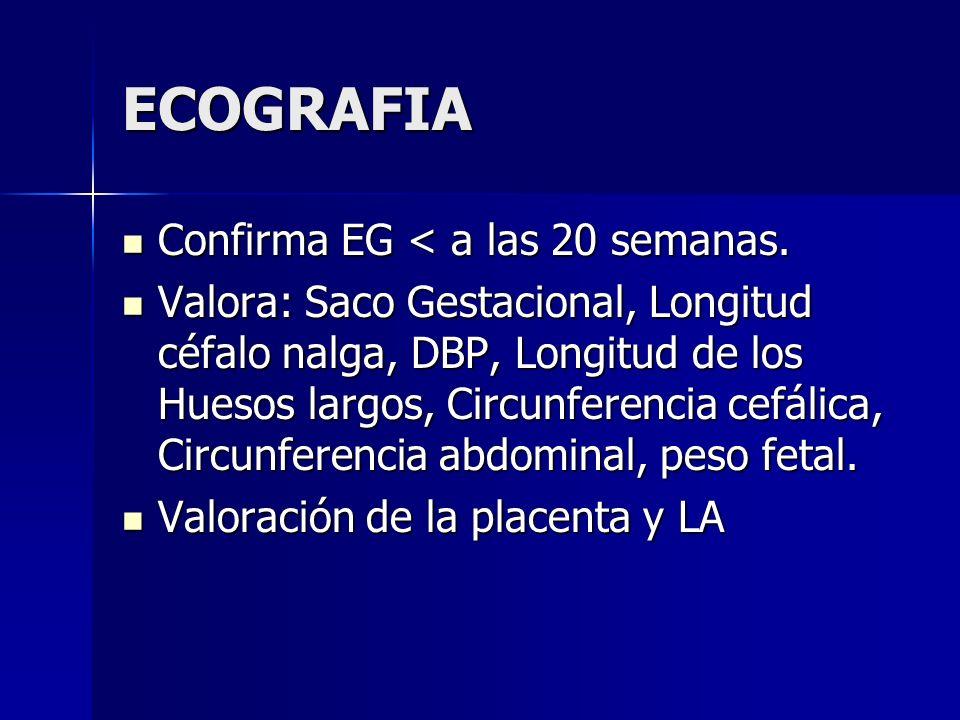 ECOGRAFIA Confirma EG < a las 20 semanas. Confirma EG < a las 20 semanas. Valora: Saco Gestacional, Longitud céfalo nalga, DBP, Longitud de los Huesos