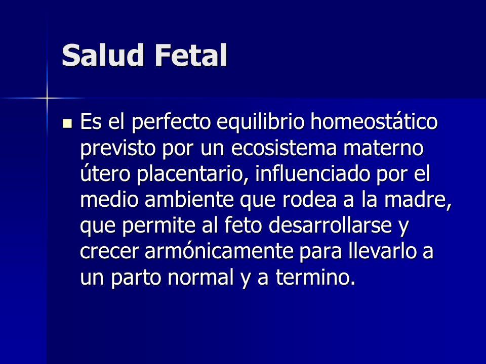 Salud Fetal Es el perfecto equilibrio homeostático previsto por un ecosistema materno útero placentario, influenciado por el medio ambiente que rodea