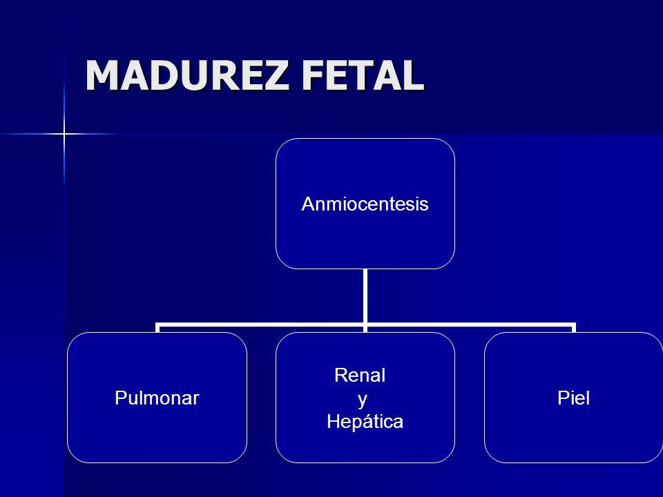 MADUREZ FETAL Anmiocentesis Pulmonar Renal y Hepática Piel