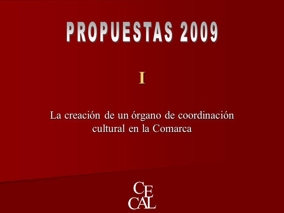 I La creación de un órgano de coordinación cultural en la Comarca