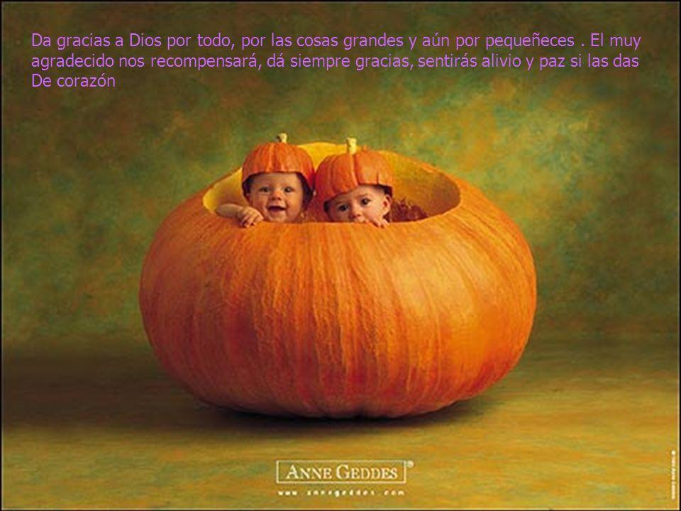 www.iasdsanjudas.com Da gracias a Dios por todo, por las cosas grandes y aún por pequeñeces. El muy agradecido nos recompensará, dá siempre gracias, s