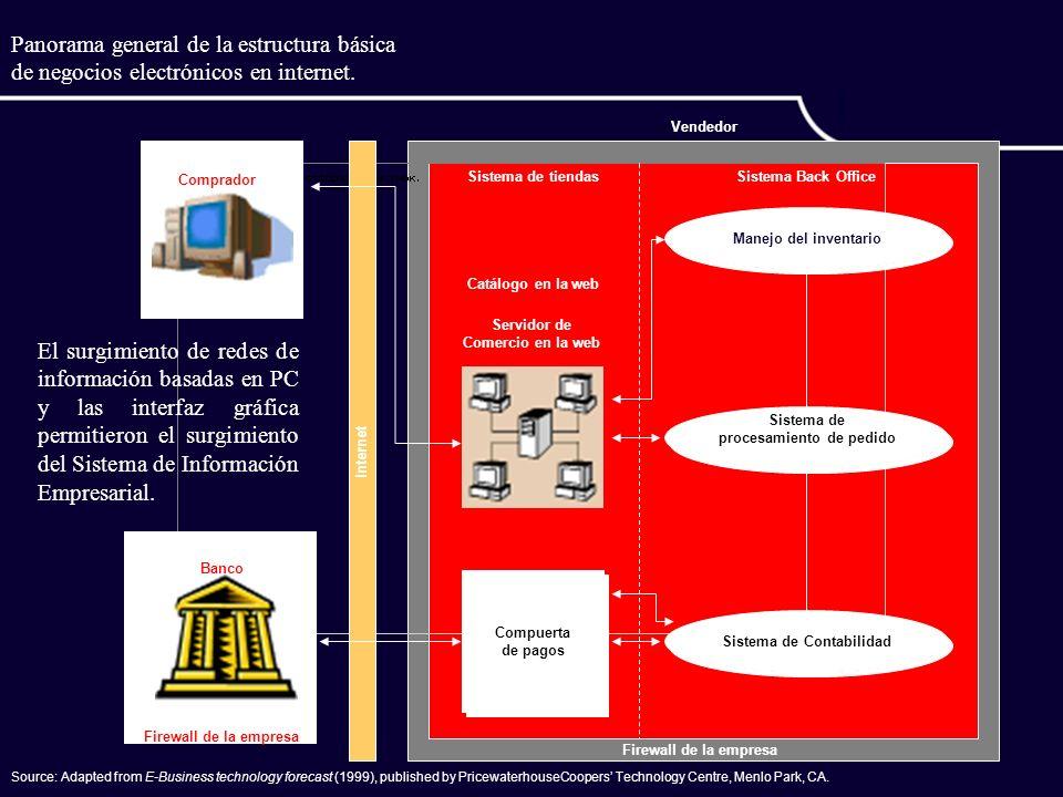 Panorama general de la estructura básica de negocios electrónicos en internet.