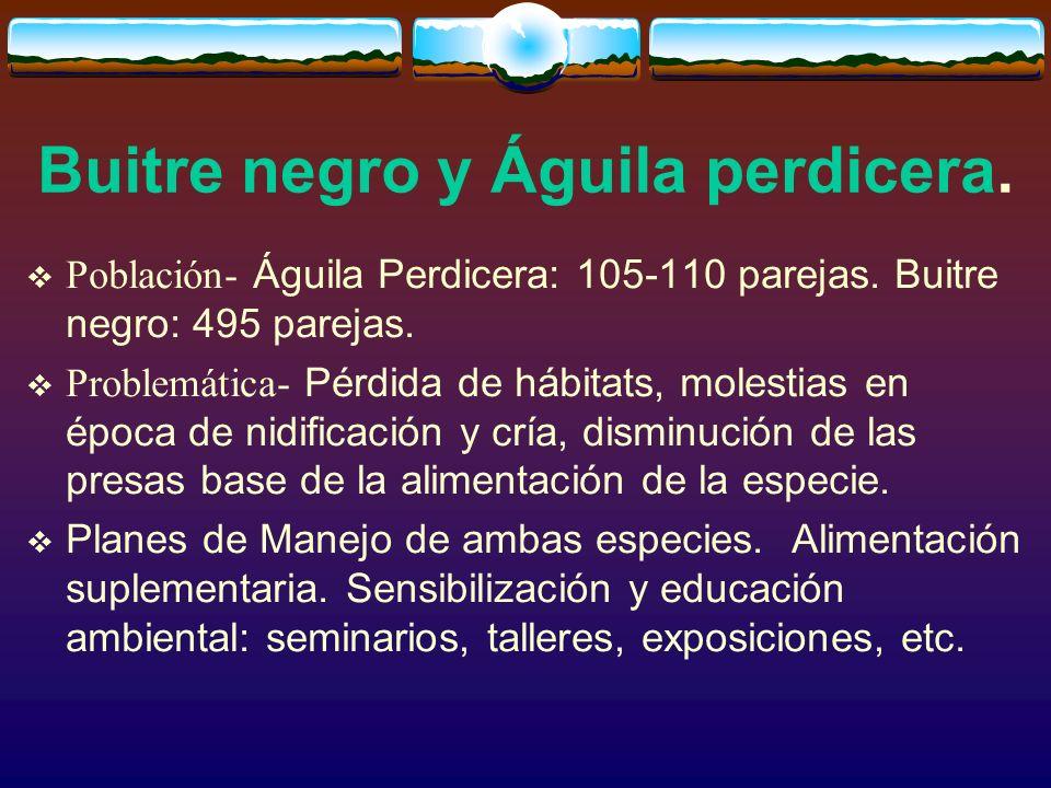 Buitre negro y Águila perdicera. Población- Águila Perdicera: 105-110 parejas. Buitre negro: 495 parejas. Problemática- Pérdida de hábitats, molestias