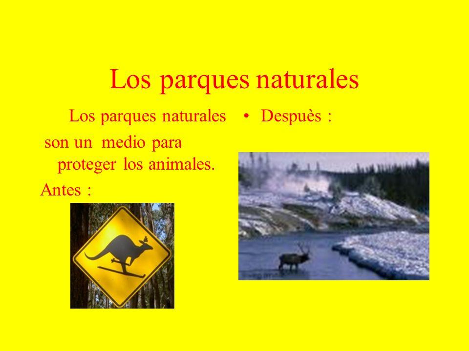 Los parques naturales son un medio para proteger los animales. Antes : Despuès :