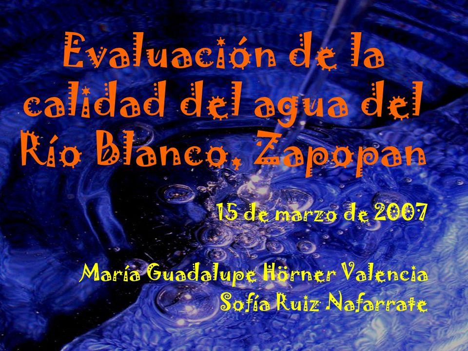 Evaluación de la calidad del agua del Río Blanco, Zapopan 15 de marzo de 2007 María Guadalupe Hörner Valencia Sofía Ruiz Nafarrate
