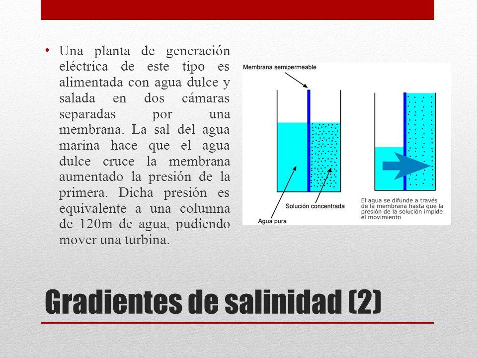 Gradientes de salinidad (2) Una planta de generación eléctrica de este tipo es alimentada con agua dulce y salada en dos cámaras separadas por una membrana.