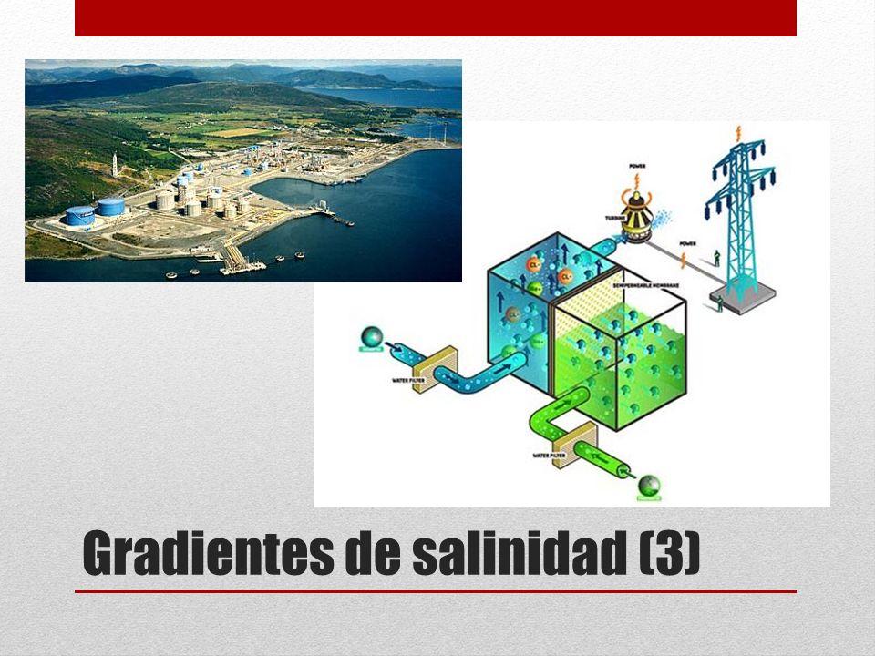 Gradientes de salinidad (3)