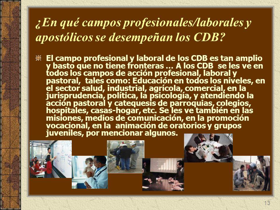 13 ¿En qué campos profesionales/laborales y apostólicos se desempeñan los CDB? El campo profesional y laboral de los CDB es tan amplio y basto que no