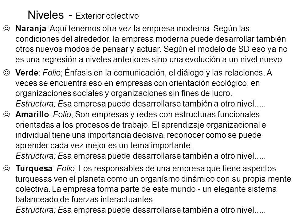 Niveles - Exterior colectivo Amarillo: Folio; Son empresas y redes con estructuras funcionales orientadas a los procesos de trabajo, El aprendizaje or