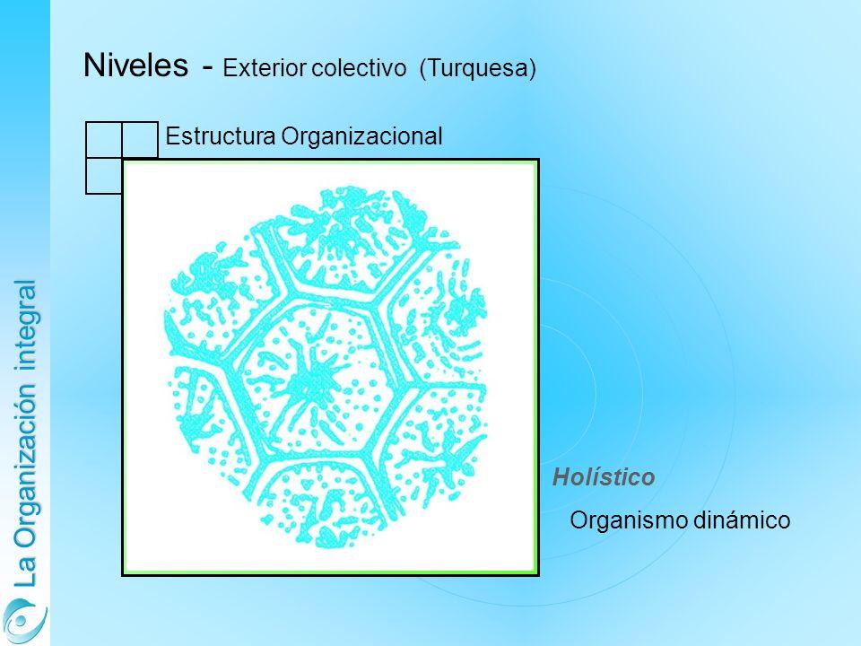 La Organización integral Niveles - Exterior colectivo (Turquesa) Estructura Organizacional Holístico Organismo dinámico