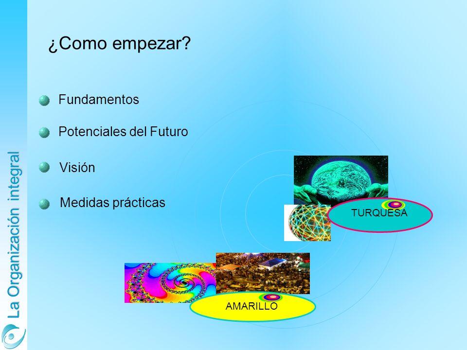La Organización integral Fundamentos Potenciales del Futuro Visión ¿Como empezar? Medidas prácticas AMARILLO TURQUESA