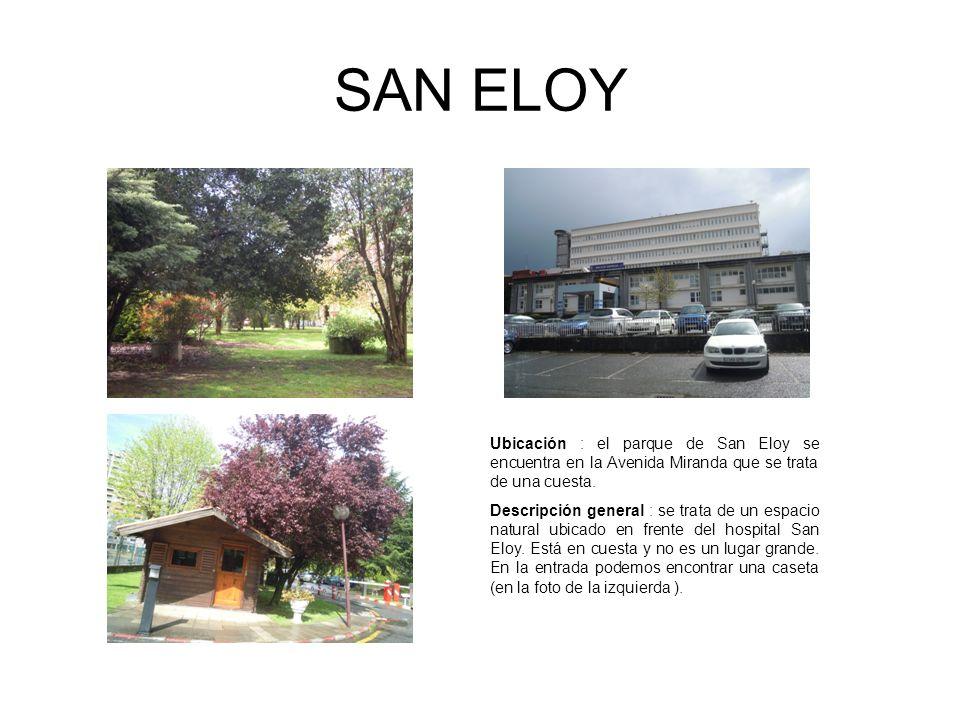 SAN ELOY Ubicación : el parque de San Eloy se encuentra en la Avenida Miranda que se trata de una cuesta. Descripción general : se trata de un espacio