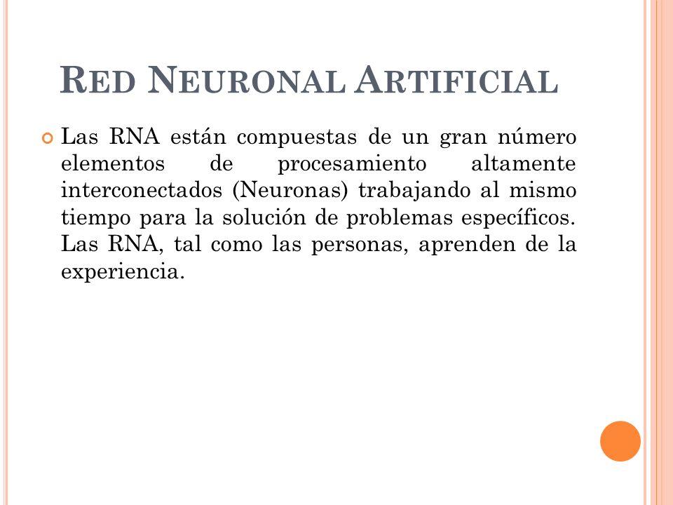 R ED N EURONAL A RTIFICIAL Las RNA están compuestas de un gran número elementos de procesamiento altamente interconectados (Neuronas) trabajando al mismo tiempo para la solución de problemas específicos.