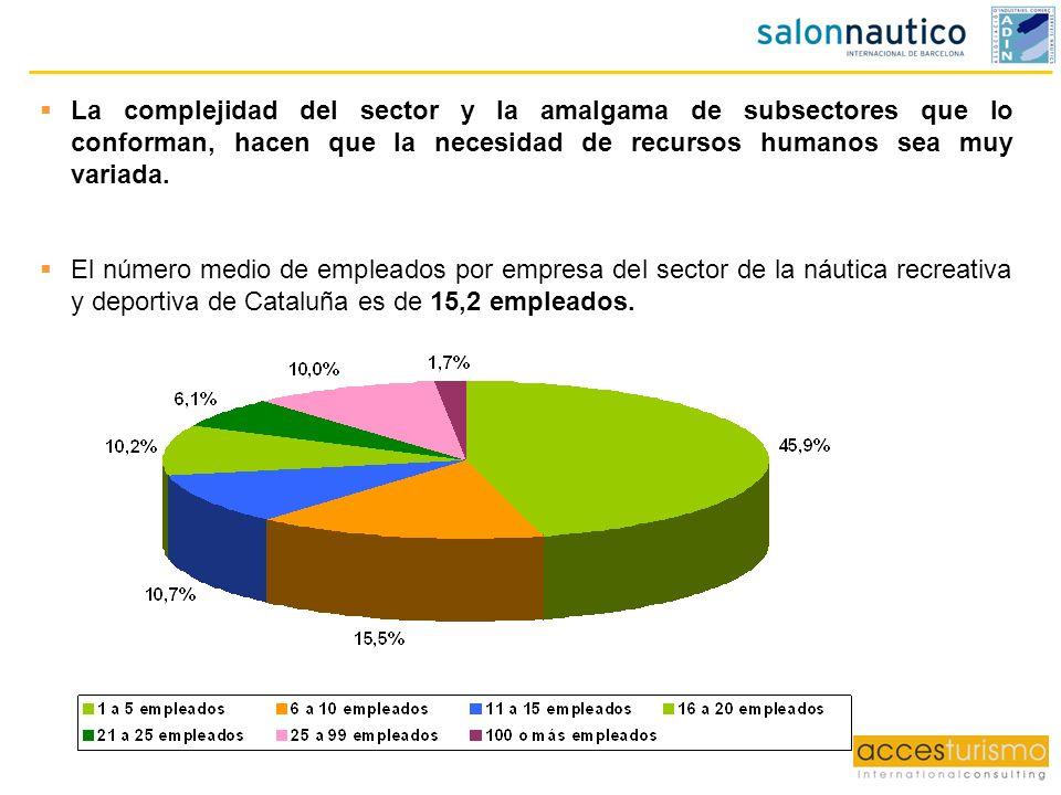 La complejidad del sector y la amalgama de subsectores que lo conforman, hacen que la necesidad de recursos humanos sea muy variada. El número medio d
