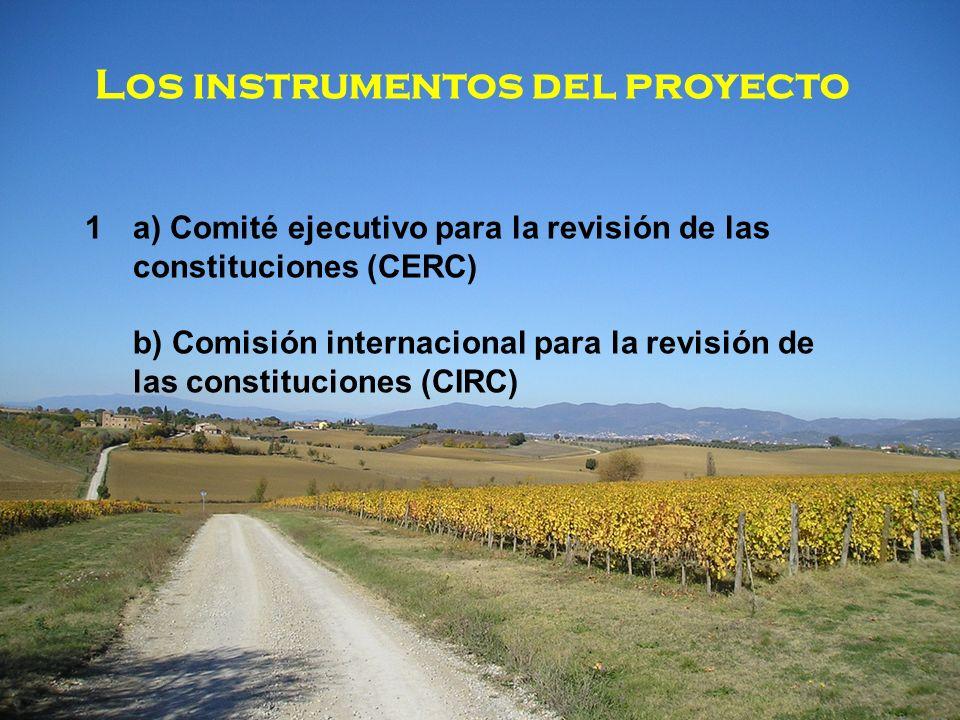 Los instrumentos del proyecto 1a) Comité ejecutivo para la revisión de las constituciones (CERC) b) Comisión internacional para la revisión de las constituciones (CIRC)