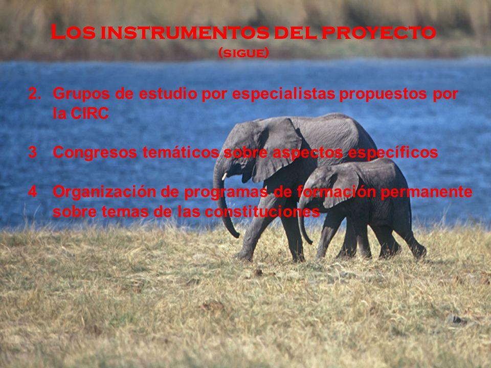 Los instrumentos del proyecto (sigue) 2.Grupos de estudio por especialistas propuestos por la CIRC 3Congresos temáticos sobre aspectos específicos 4Organización de programas de formación permanente sobre temas de las constituciones