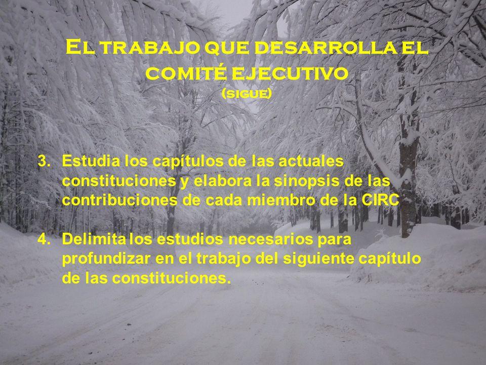 El trabajo que desarrolla el comité ejecutivo (sigue) 3.