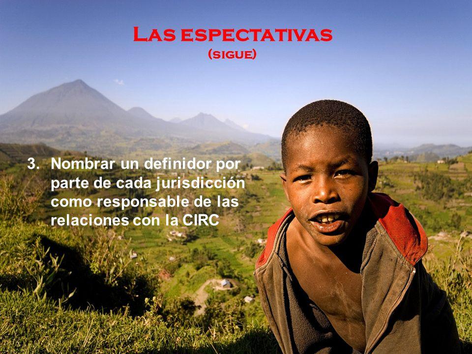 Las espectativas (sigue) 3.Nombrar un definidor por parte de cada jurisdicción como responsable de las relaciones con la CIRC