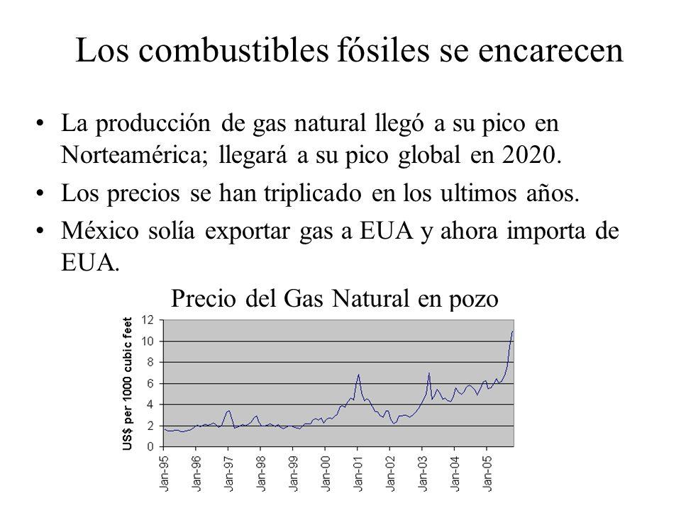 Los combustibles fósiles se encarecen La producción de gas natural llegó a su pico en Norteamérica; llegará a su pico global en 2020. Los precios se h