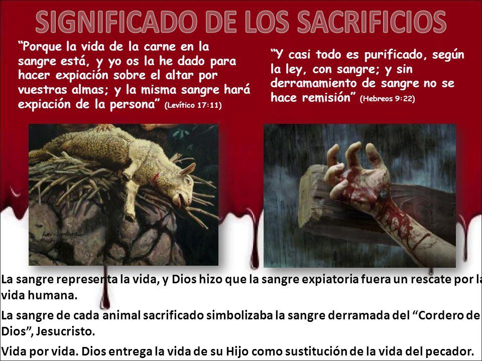 Porque la vida de la carne en la sangre está, y yo os la he dado para hacer expiación sobre el altar por vuestras almas; y la misma sangre hará expiac