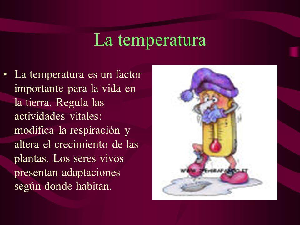 La temperatura La temperatura es un factor importante para la vida en la tierra.
