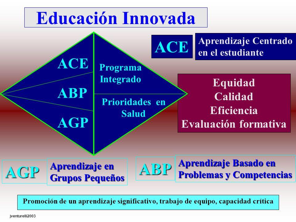 Equidad Calidad Eficiencia Evaluación formativa Educación Innovada Promoción de un aprendizaje significativo, trabajo de equipo, capacidad crítica ACE