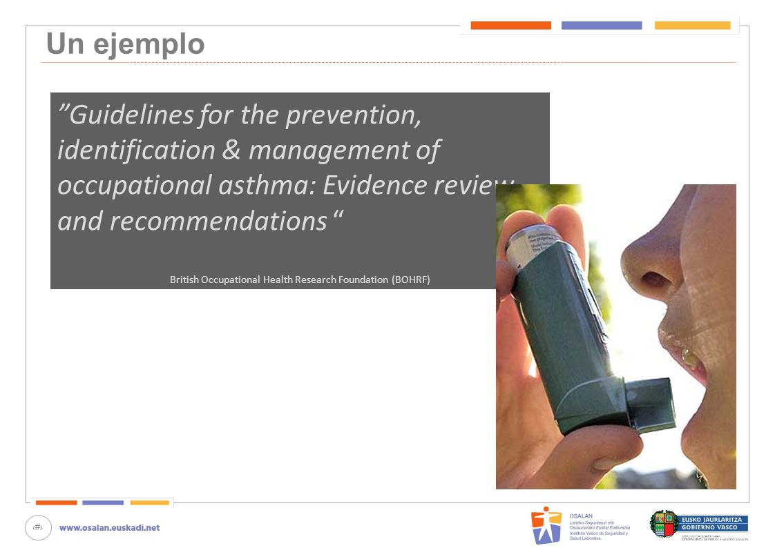 16 Un ejemplo Guidelines for the prevention, identification & management of occupational asthma: Evidence review and recommendations British Occupatio