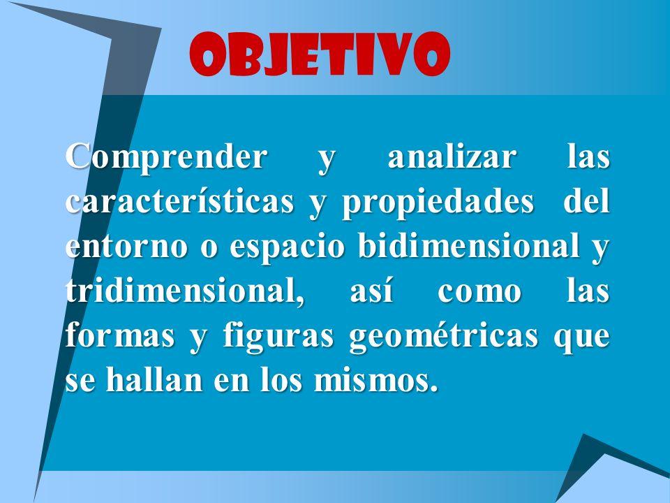 HEXAEDRO REGULAR O CUBO Formado por seis cuadrados.