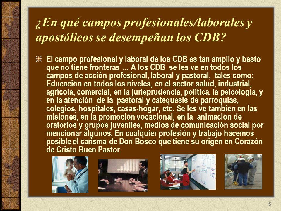 5 ¿En qué campos profesionales/laborales y apostólicos se desempeñan los CDB? El campo profesional y laboral de los CDB es tan amplio y basto que no t