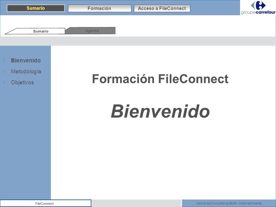 Centre de Compétence BtoB – Internet/Intranet FileConnect Formación FileConnect Bienvenido Agenda Sumario FormaciónAcceso a FileConnect Bienvenido Met