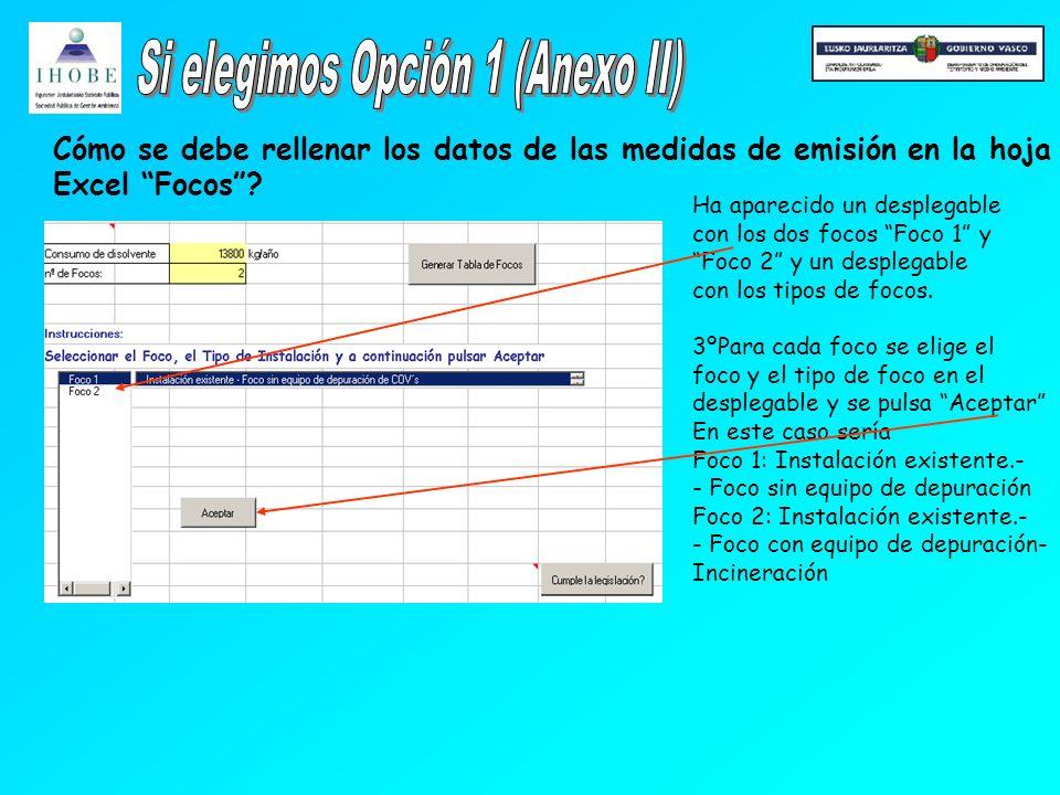 Cómo se debe rellenar los datos de las medidas de emisión en la hoja Excel Focos.