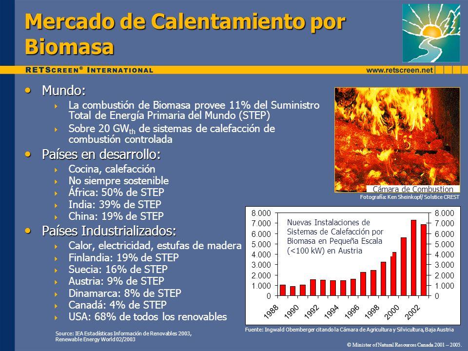 Mundo: Mundo: La combustión de Biomasa provee 11% del Suministro Total de Energía Primaria del Mundo (STEP) Sobre 20 GW th de sistemas de calefacción