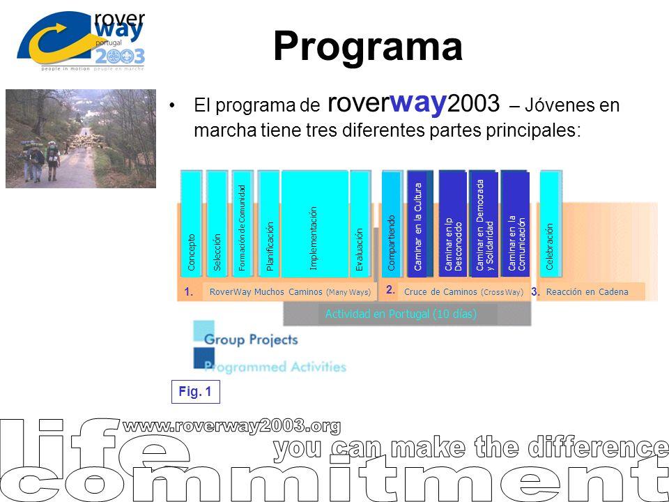 Programa El programa de rover way 2003 – Jóvenes en marcha tiene tres diferentes partes principales: 1. 2. 3. Fig. 1 ConceptoSelección Formación de Co