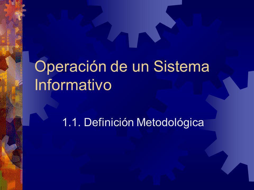 Operación de un Sistema Informativo 1.1. Definición Metodológica