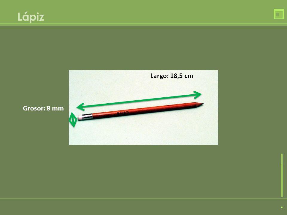 Caracol Largo: 85 mm