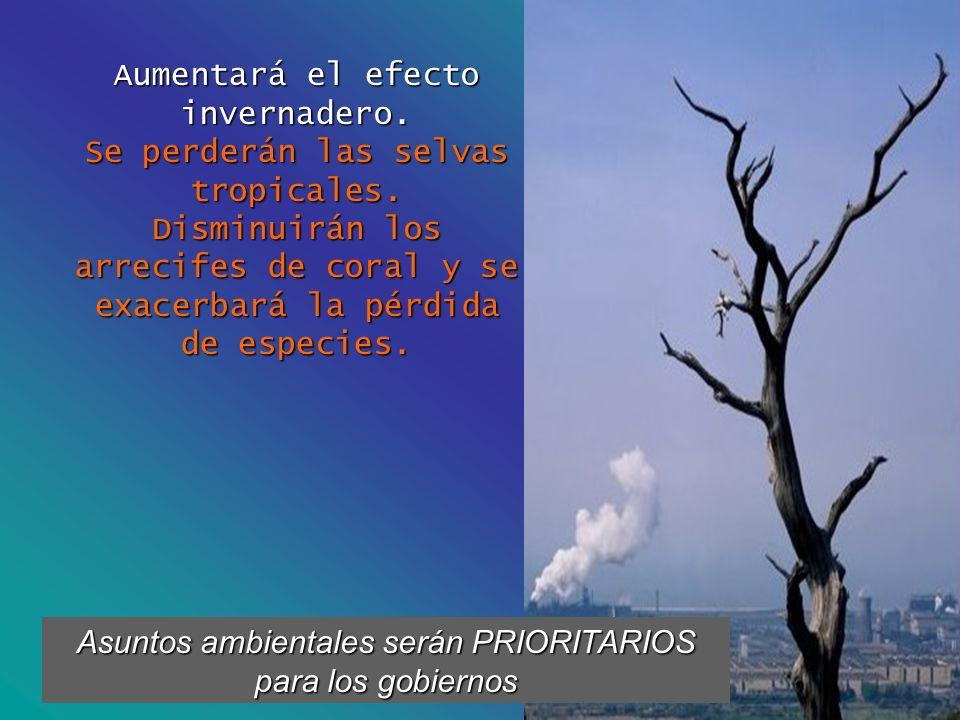 Aumentará el efecto invernadero. Se perderán las selvas tropicales. Disminuirán los arrecifes de coral y se exacerbará la pérdida de especies. Asuntos