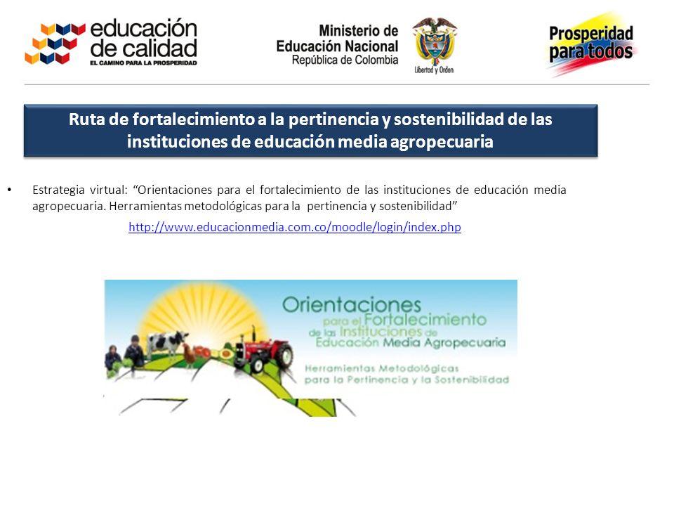 Ruta de fortalecimiento a la pertinencia y sostenibilidad de las instituciones de educación media agropecuaria Estrategia virtual: Orientaciones para