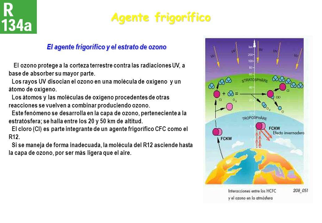 Agente frigorífico El agente frigorífico y el estrato de ozono El agente frigorífico y el estrato de ozono El ozono protege a la corteza terrestre con