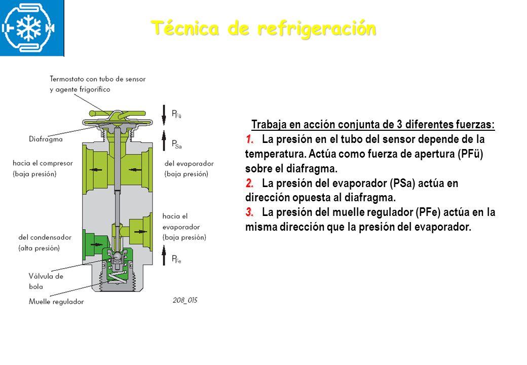 Técnica de refrigeración Trabaja en acción conjunta de 3 diferentes fuerzas: 1. 1. La presión en el tubo del sensor depende de la temperatura. Actúa c