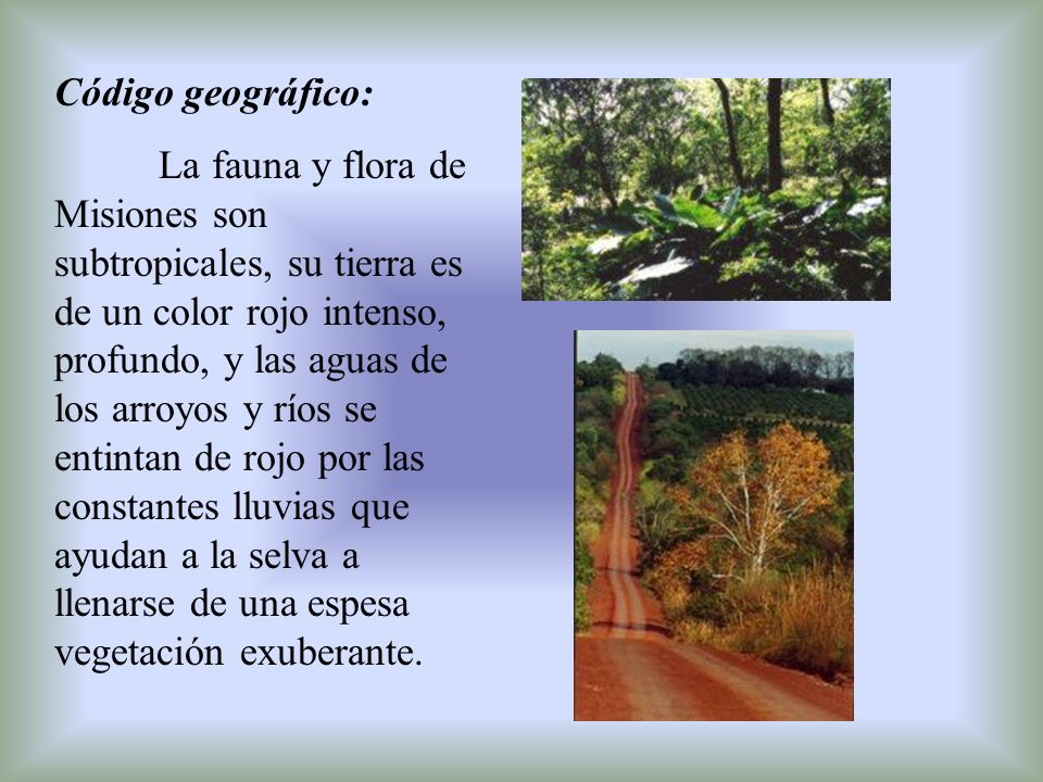 El largo y ancho río Paraná atraviesa la región.