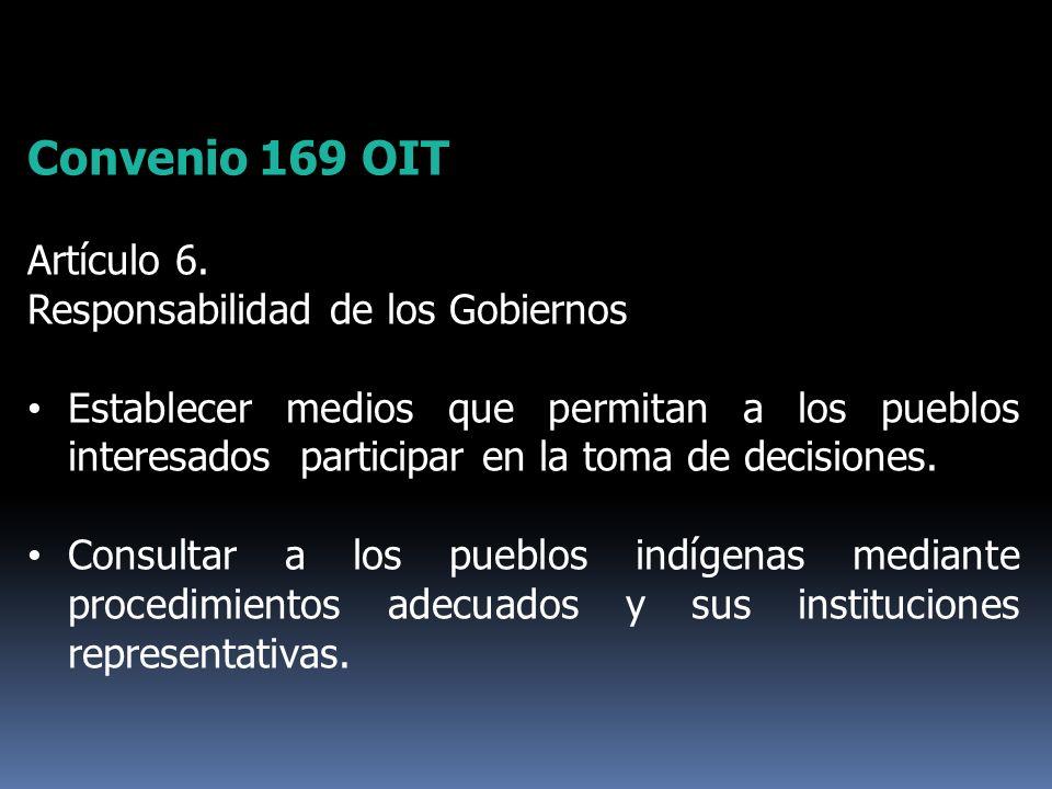 Convenio 169 OIT Artículo 6. Responsabilidad de los Gobiernos Establecer medios que permitan a los pueblos interesados participar en la toma de decisi
