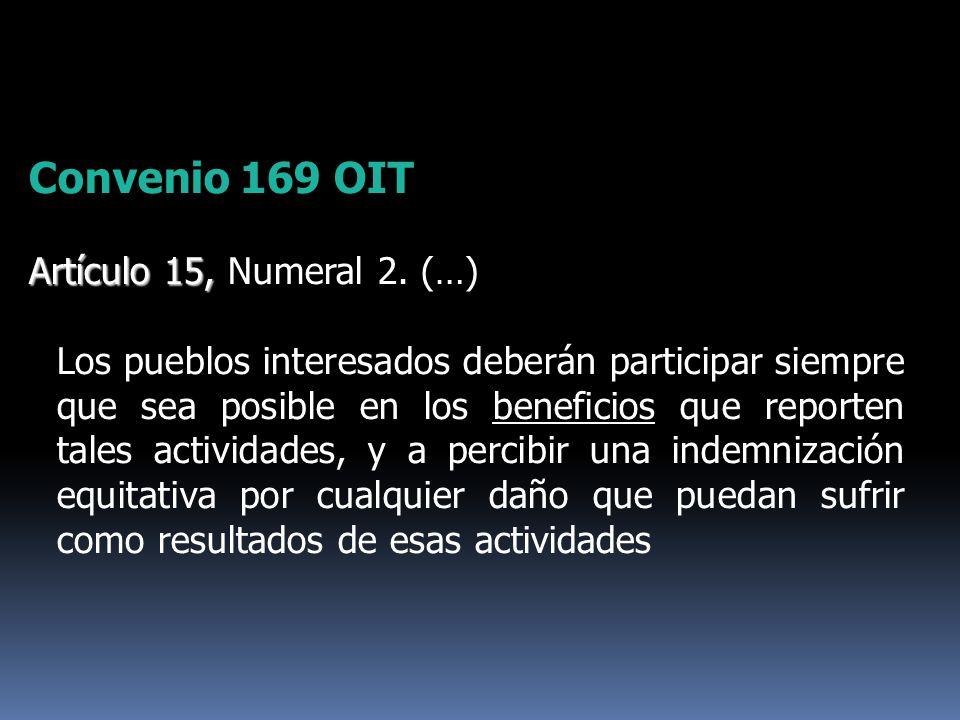 Convenio 169 OIT Artículo 15, Artículo 15, Numeral 2. (…) Los pueblos interesados deberán participar siempre que sea posible en los beneficios que rep