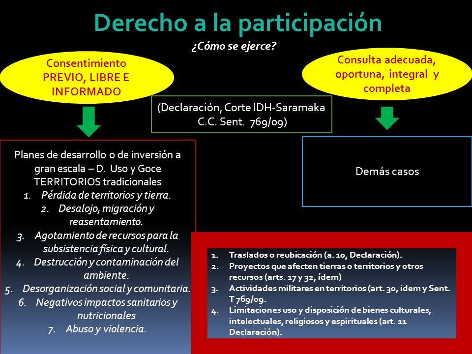 Derecho a la participación ¿Cómo se ejerce? Planes de desarrollo o de inversión a gran escala – D. Uso y Goce TERRITORIOS tradicionales 1.Pérdida de t