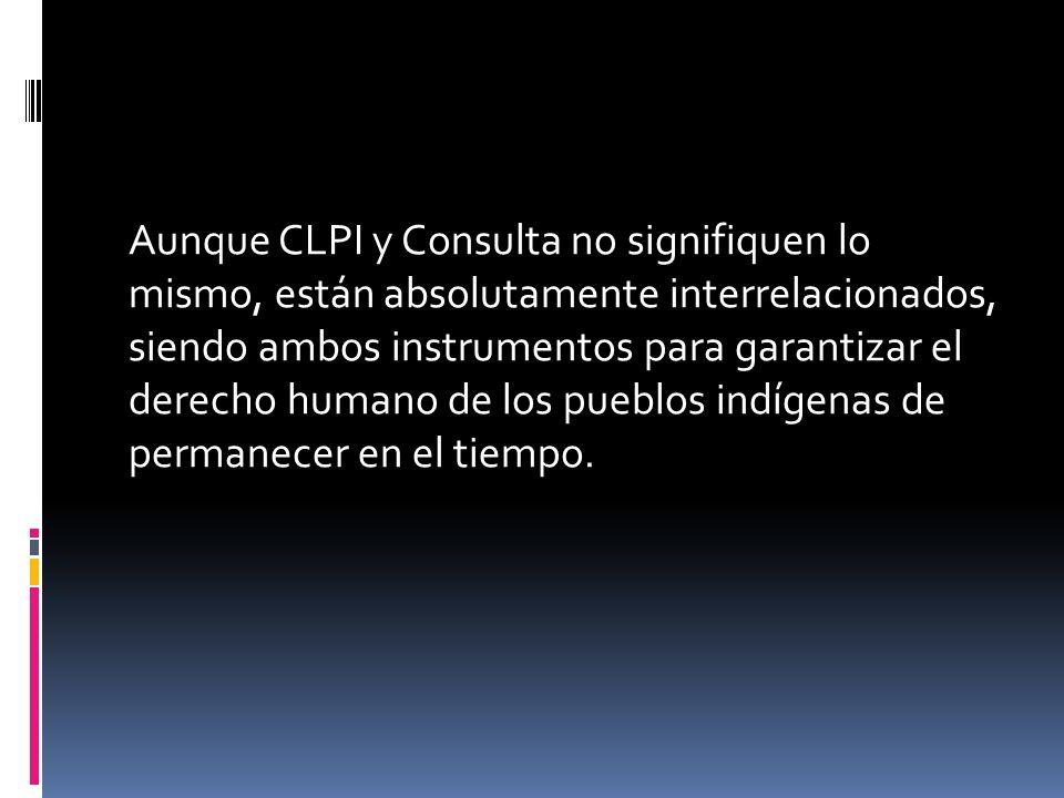 Aunque CLPI y Consulta no signifiquen lo mismo, están absolutamente interrelacionados, siendo ambos instrumentos para garantizar el derecho humano de